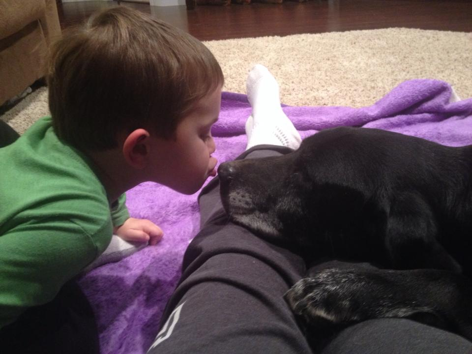 Black Lab & Child